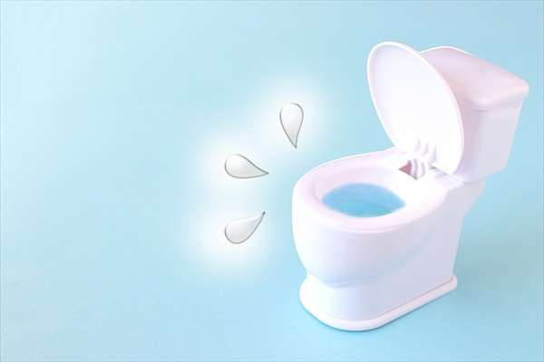 着圧ソックスとトイレ
